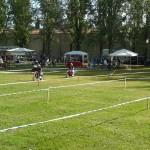 festa-dello-sport-12