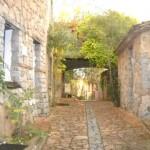 Monte Turri