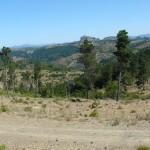 Sardegna Rallye Race 2012 (232)
